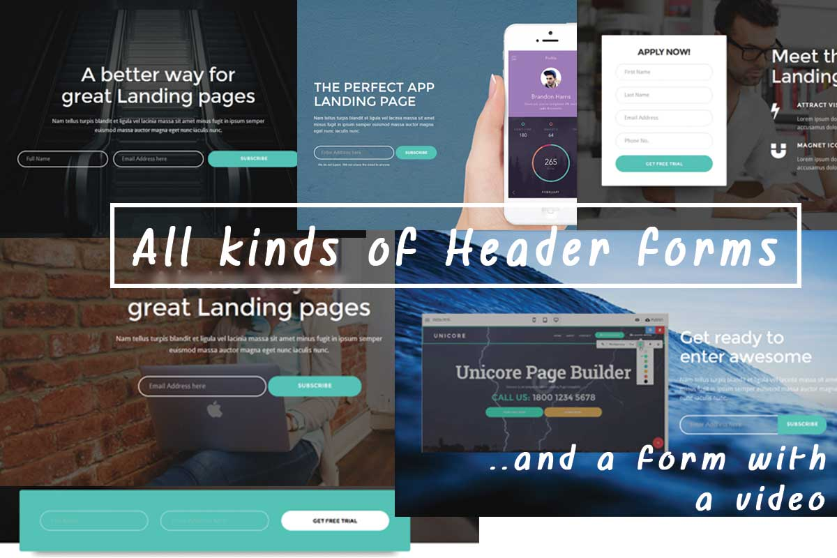 Best Bootstrap Minimal Theme Template
