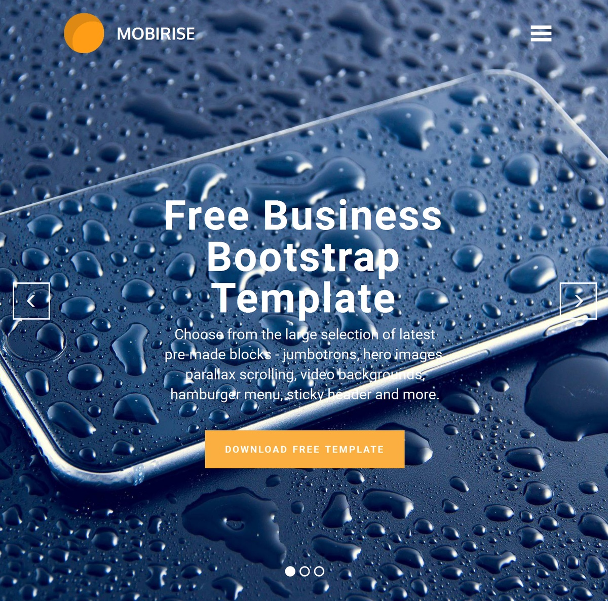 Responsive Web Templates Themes Extensions
